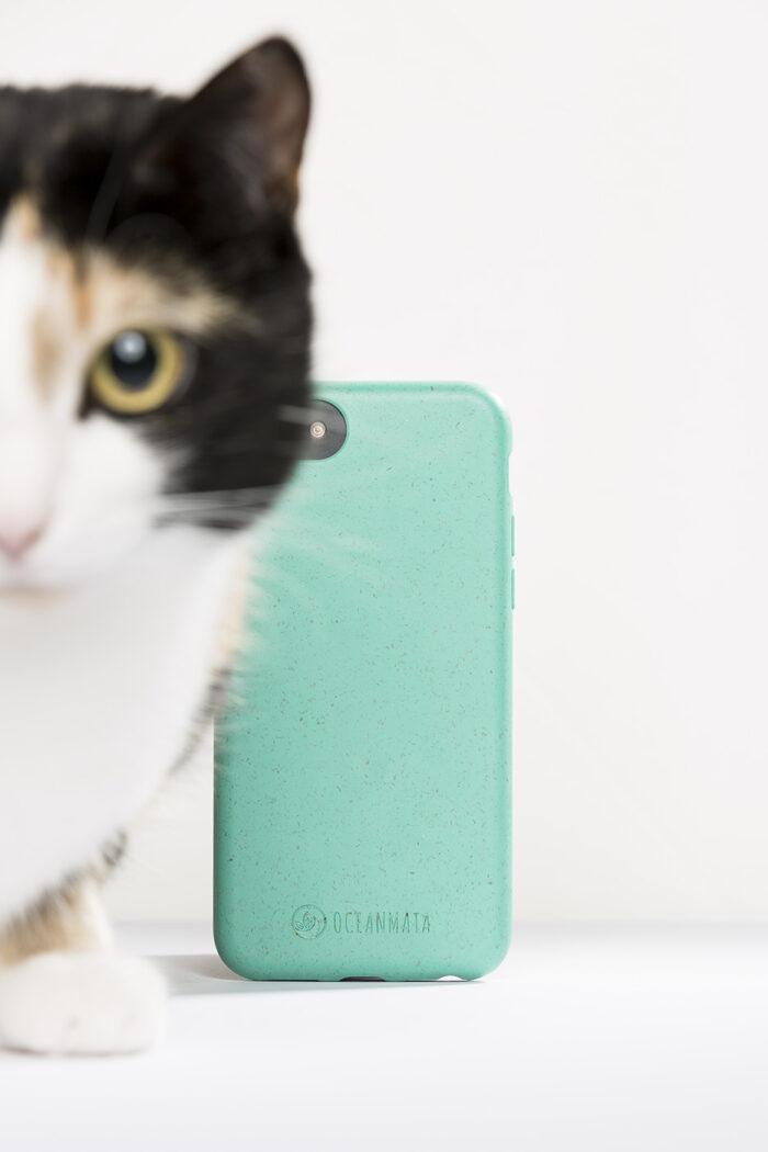 Produktfotografie einer Handyhülle mit Katze die sich ins Werbefoto geschlichen hat